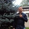 Alexey Voronin