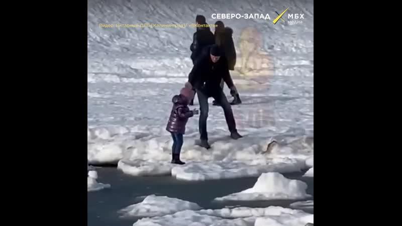 Селфи на льдине или в поисках острых ощущений