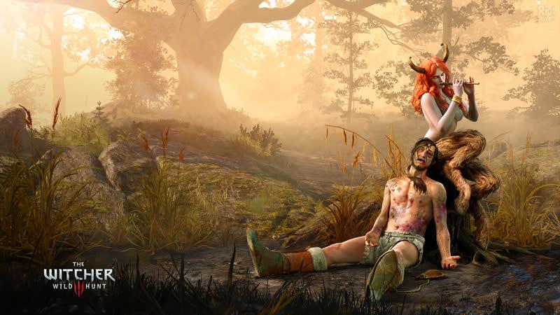 The Witcher 3 Wild Hunt часть 18